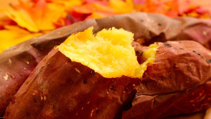 秋の収穫祭!さつまいも収穫と焼きいも&おさつチップス!