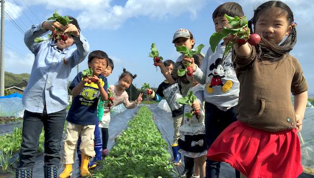 やっぱり楽しい収穫体験!