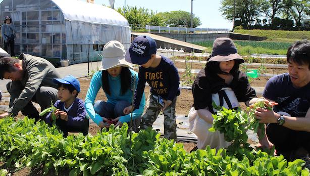 春の栽培講習会